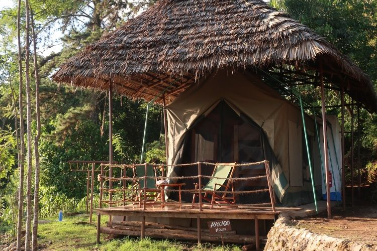 Camp Veranda