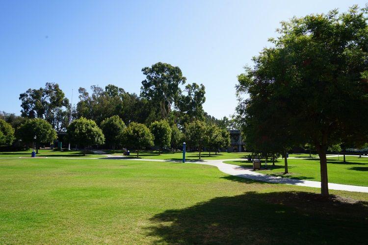 Auf dem Campus