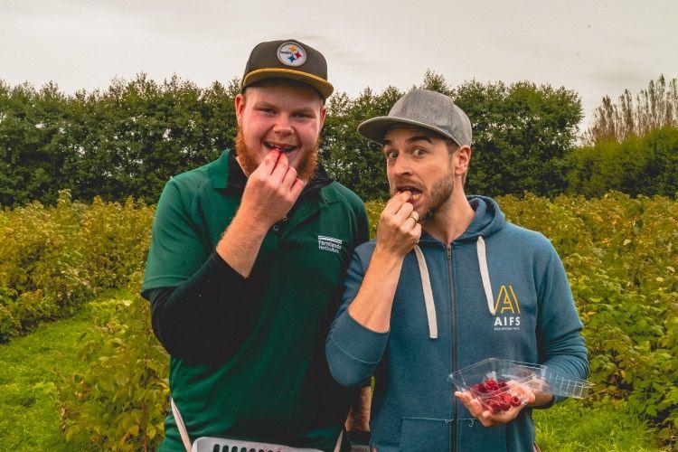 Fruitpicking in Neuseeland