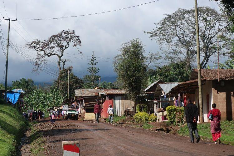 Mweka Village