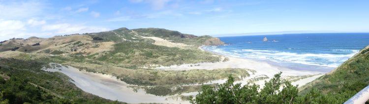 Otago Peninsula Cape Saunders