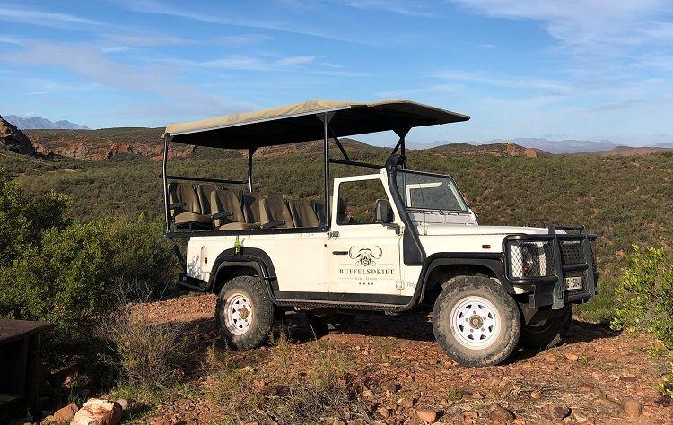Mit dem Auto auf Safari